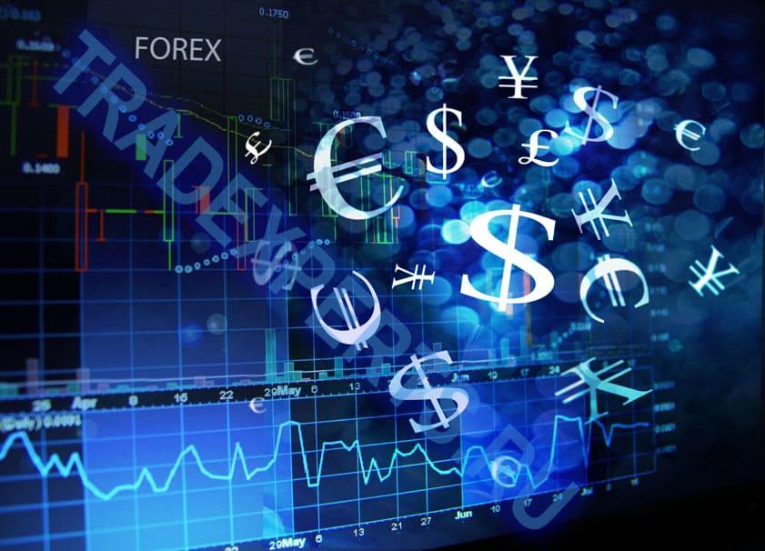 Открытие счета forex копания е торо форекс
