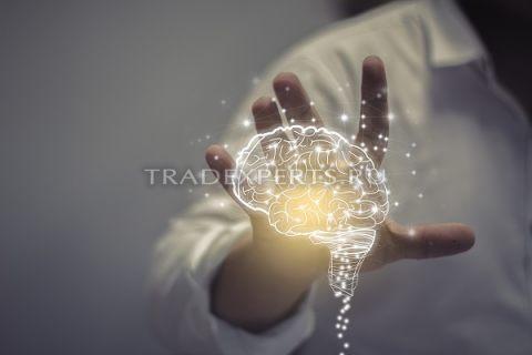 Психология рынка Forex и понимание торговых процессов