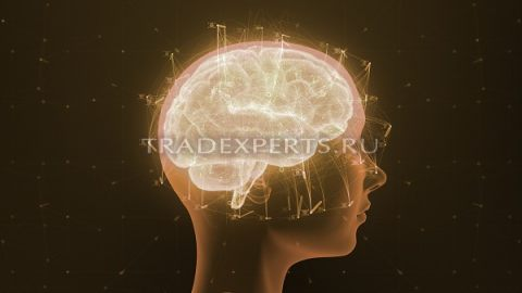 Психология торговли на Форекс