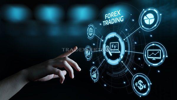 Регестрация на форекс биржа форекс биржа котировки акций